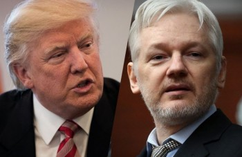 Donald Establishment Trump: teraz Wikileaks